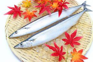 秋刀魚と紅葉